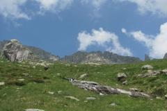 14/07/2013  Val masino rifugio omio
